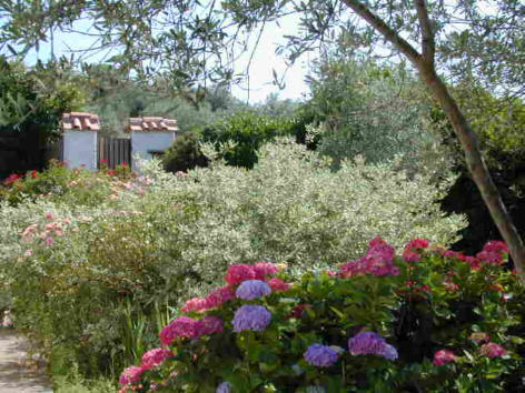 Bed and breakfast Umbria Verde