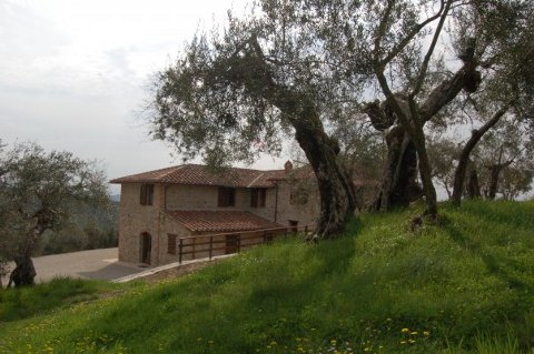 Bed and breakfast Casale Mille Soli