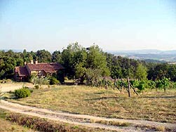Farmhouse Cimbolello