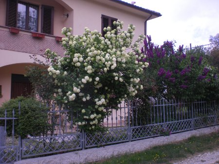 Bed and breakfast Il Castellare